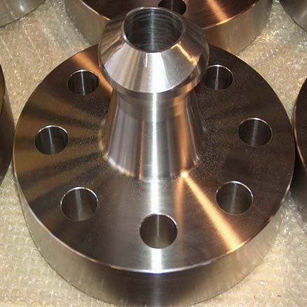 Stainless Steel Weldo Flanges